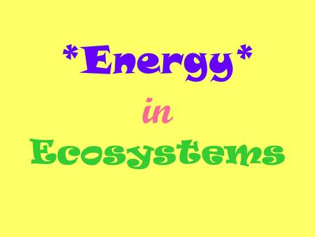 *Energy* in Ecosystems. Producers- an organism that uses energy from the sun to produce their own food. Producers are the source of all food in an ecosystem.