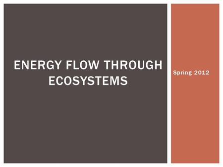 Spring 2012 ENERGY FLOW THROUGH ECOSYSTEMS.  All organisms MUST obtain and use energy… ENERGY FLOW THROUGH ECOSYSTEMS.
