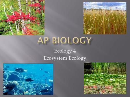 Ecology 4 Ecosystem Ecology.  Ecosystems are the sum of all the organisms living in an area plus all the abiotic factors with which they interact. A.