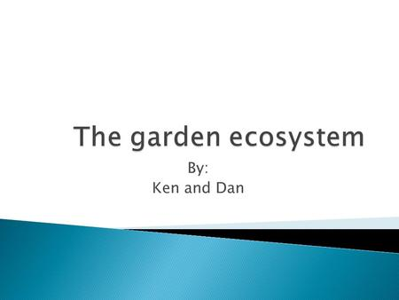 By: Ken and Dan. The garden ecosystem has three key components to it Producers Consumers Decomposers.