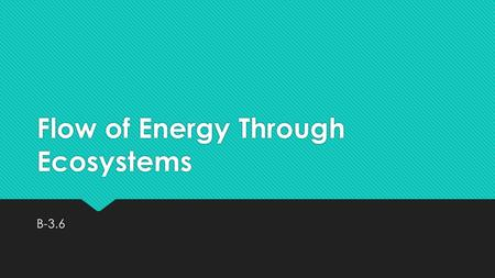 Flow of Energy Through Ecosystems B-3.6. Energy Through Ecosystems  The flow of energy through ecosystems can be described and illustrated in food chains,