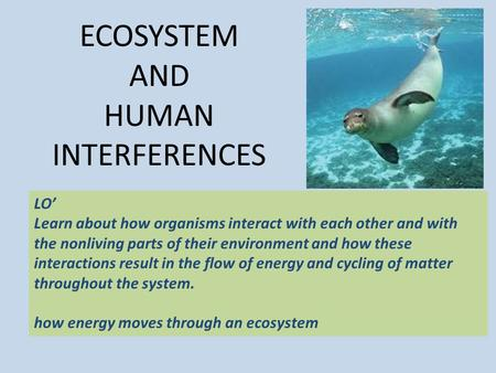 ECOSYSTEM AND HUMAN INTERFERENCES LO' Learn about how organisms interact with each other and with the nonliving parts of their environment and how these.