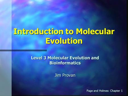 Introduction to Molecular Evolution Level 3 Molecular Evolution and Bioinformatics Jim Provan Page and Holmes: Chapter 1.