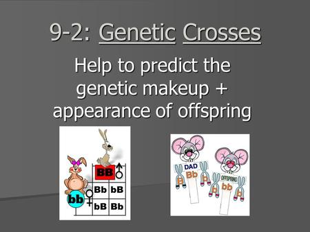 9-2: Genetic Crosses Help to predict the genetic makeup + appearance of offspring.