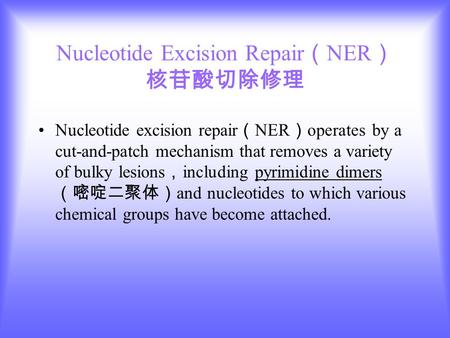 Nucleotide Excision Repair ( NER ) 核苷酸切除修理 Nucleotide excision repair ( NER ) operates by a cut-and-patch mechanism that removes a variety of bulky lesions.
