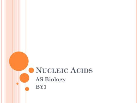 N UCLEIC A CIDS AS Biology BY1. N UCLEIC A CIDS - M ADE IN THE NUCLEUS AND SLIGHTLY ACIDIC Long molecules (polymers) made up of nucleotides Linked by.