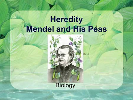 Heredity Mendel and His Peas Biology. First, Let's Review! Sexual Reproduction Process of a sperm fertilizing an egg Gametes Sex cells (eggs, sperm)