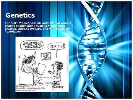 Genetics TEKS 6F: Predict possible outcomes of various genetic combinations such as monohybrid crosses, dihybrid crosses, and non-Mendelian inheritance.