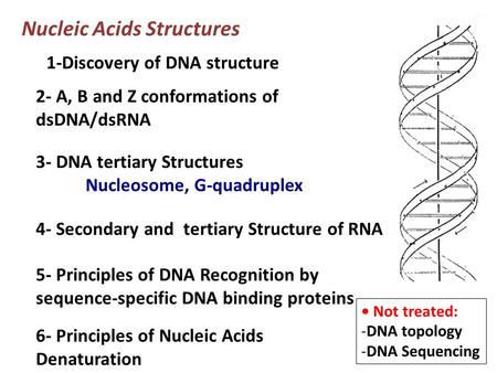 Nucleic Acids Structures 1-Discovery of DNA structure 2- A, B and Z conformations of dsDNA/dsRNA Not treated: -DNA topology -DNA Sequencing 5- Principles.