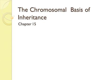 The Chromosomal Basis of Inheritance Chapter 15. The Chromosomal Theory of Inheritance chromosomes and genes are present as pairs in diploid cells homologous.