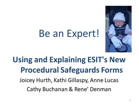 Be an Expert! Using and Explaining ESIT's New Procedural Safeguards Forms Joicey Hurth, Kathi Gillaspy, Anne Lucas Cathy Buchanan & Rene' Denman 1.