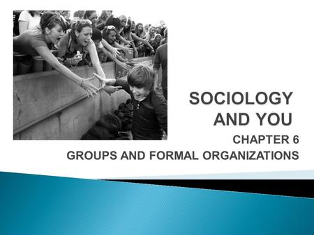CHAPTER 6 GROUPS AND FORMAL ORGANIZATIONS. Groups are classified by how they develop and function. Primary groups meet emotional and support needs, while.