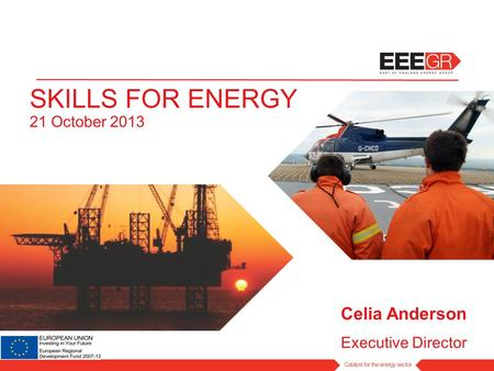 SKILLS FOR ENERGY 21 October 2013 Celia Anderson Executive Director.