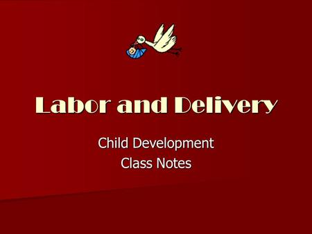 Labor and Delivery Child Development Class Notes.