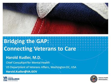 Bridging the GAP: Connecting Veterans to Care Harold Kudler, M.D. Chief Consultant for Mental Health US Department of Veterans Affairs, Washington DC,