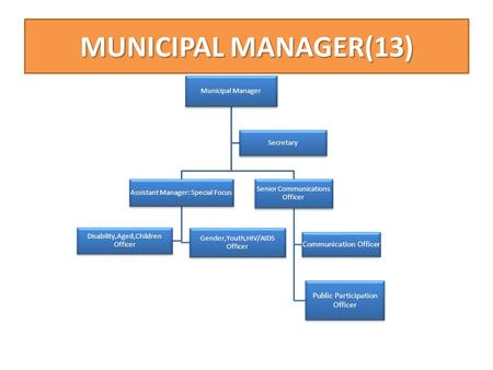MUNICIPAL MANAGER(13) Municipal Manager Senior Communications Officer Public Participation Officer Communication Officer Assistant Manager: Special Focus.