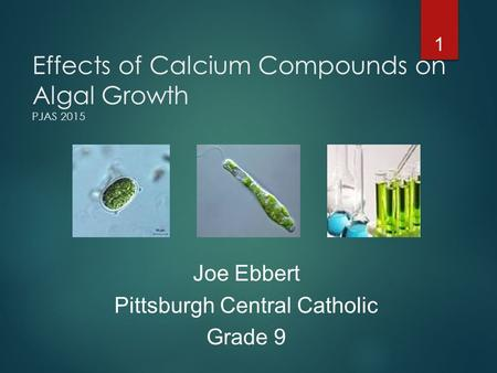 Effects of Calcium Compounds on Algal Growth PJAS 2015 1 Joe Ebbert Pittsburgh Central Catholic Grade 9.