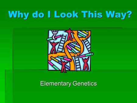 Why do I Look This Way? Elementary Genetics. Chromosomes Chromosomes carry the genetic information of the individual. Each chromosome is made of a single.