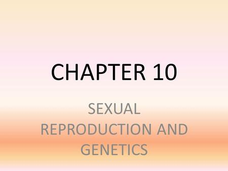 CHAPTER 10 SEXUAL REPRODUCTION AND GENETICS. SECTION 10.1 – MEIOSIS MAIN IDEA – MEIOSIS PRODUCES HAPLOID GAMETES. – All of the differences you see in.