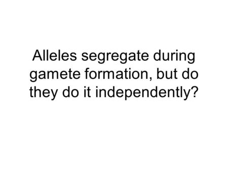 Alleles segregate during gamete formation, but do they do it independently?