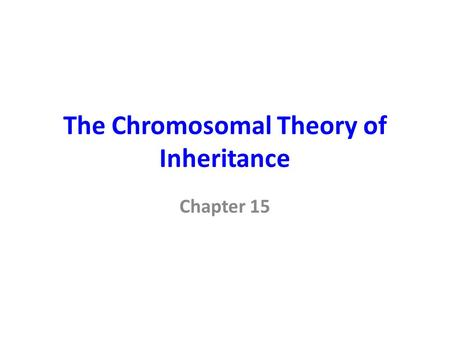 The Chromosomal Theory of Inheritance
