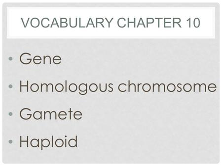 VOCABULARY CHAPTER 10 Gene Homologous chromosome Gamete Haploid.