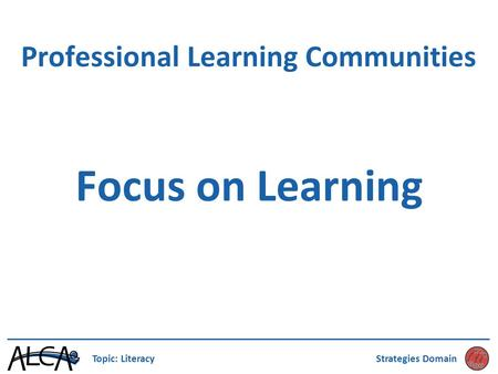 Professional Learning Communities Focus on Learning Topic: LiteracyStrategies Domain.