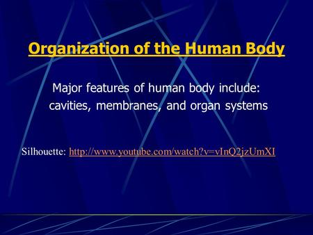 Organization of the Human Body Major features of human body include: cavities, membranes, and organ systems Silhouette: