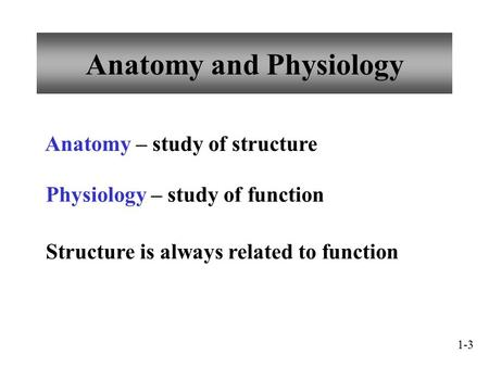 Anatomy and Physiology Anatomy – study of structure Physiology – study of function Structure is always related to function 1-3.