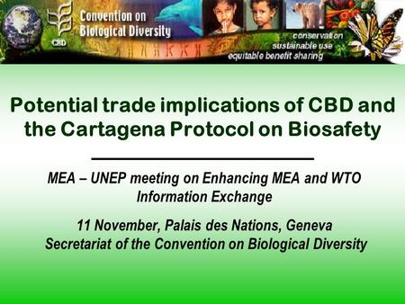Potential trade implications of CBD and the Cartagena Protocol on Biosafety MEA – UNEP meeting on Enhancing MEA and WTO Information Exchange 11 November,