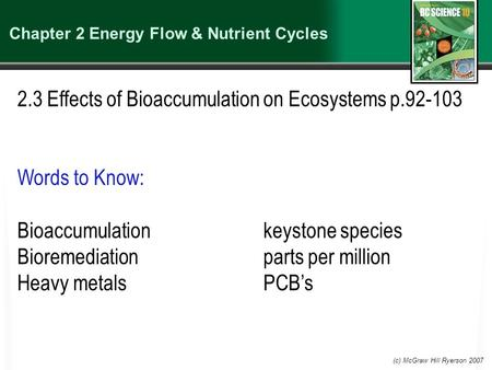 (c) McGraw Hill Ryerson 2007 Chapter 2 Energy Flow & Nutrient Cycles 2.3 Effects of Bioaccumulation on Ecosystems p.92-103 Words to Know: Bioaccumulationkeystone.