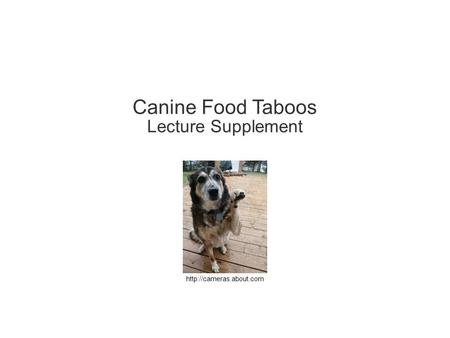 Canine Food Taboos Lecture Supplement.