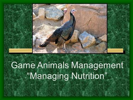 "Game Animals Management ""Managing Nutrition"". Next Generation Science / Common Core Standards Addressed! HS ‐ LS4 ‐ 5. Evaluate the evidence supporting."