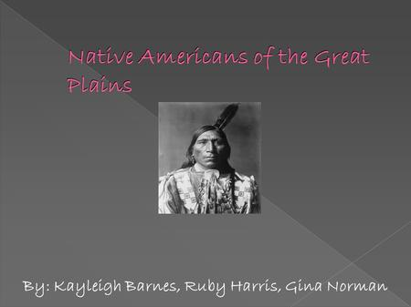 Native Americans of the Great Plains By: Kayleigh Barnes, Ruby Harris, Gina Norman.