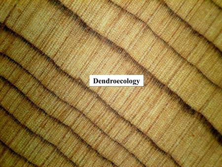 Dendroecology. Dendroecology uses dated tree rings to study ecological events such as fire and insect outbreaks Was developed by Theodor Hartig and Robert.