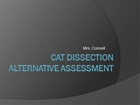 Mrs. Connell. Assignment: Part 1  You must construct a PowerPoint presentation for each day that you have missed for the cat dissection.  Your presentation.