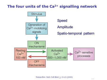 The four units of the Ca 2+ signalling network Nature Rev. Mol. Cell Biol. 1, 11-21 (2000) Speed Amplitude Spatio-temporal pattern.