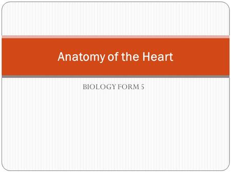 BIOLOGY FORM 5 Anatomy of the Heart. The heart is the organ that supplies blood and oxygen to all parts of the body. It is about the size of a clenched.