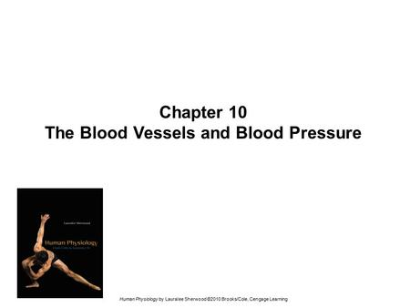 The Blood Vessels and Blood Pressure