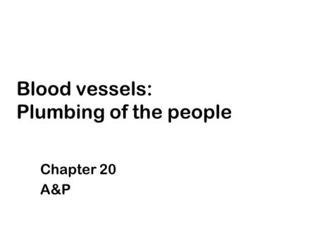 Blood vessels: Plumbing of the people Chapter 20 A&P.
