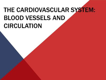 THE CARDIOVASCULAR SYSTEM: BLOOD VESSELS AND CIRCULATION.