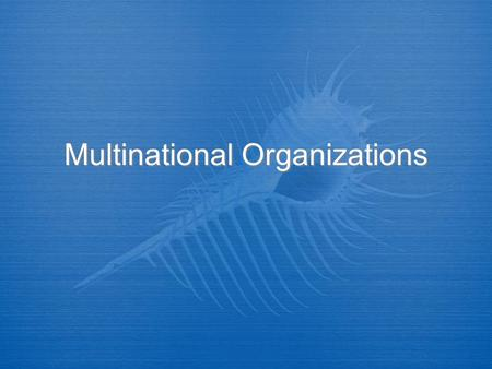Multinational Organizations. The United Nations Directions  Using the following Power Points fill out the UN Graphic Organizer Worksheet.  Take your.