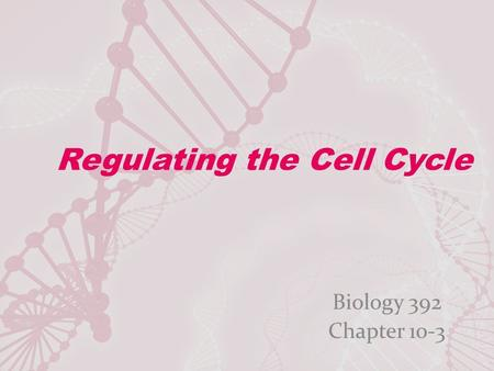 Regulating the Cell Cycle Biology 392 Chapter 10-3.