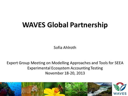WAVES Global Partnership Sofia Ahlroth Expert Group Meeting on Modelling Approaches and Tools for SEEA Experimental Ecosystem Accounting Testing November.