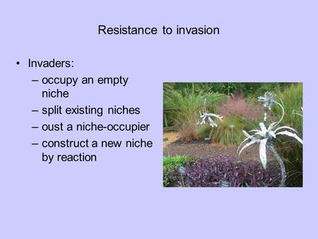 Resistance to invasion Invaders: –occupy an empty niche –split existing niches –oust a niche-occupier –construct a new niche by reaction.