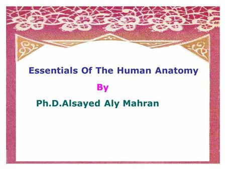 Essentials Of The Human Anatomy By Ph.D.Alsayed Aly Mahran.