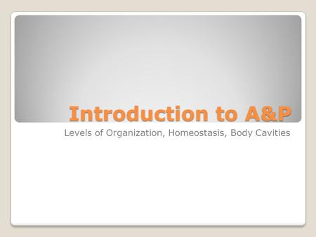 Introduction to A&P Levels of Organization, Homeostasis, Body Cavities.