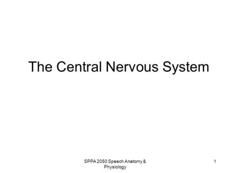 SPPA 2050 Speech Anatomy & Physiology 1 The Central Nervous System.