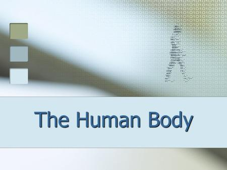 The Human Body. DEFINITIONS Anatomy – the study of the structures of the body (ex.- names of bones) Physiology – the study of the functions of these structures.