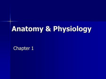 Anatomy & Physiology Chapter 1. A & P Anatomy - study of structure Anatomy - study of structure Physiology - study of function Physiology - study of function.